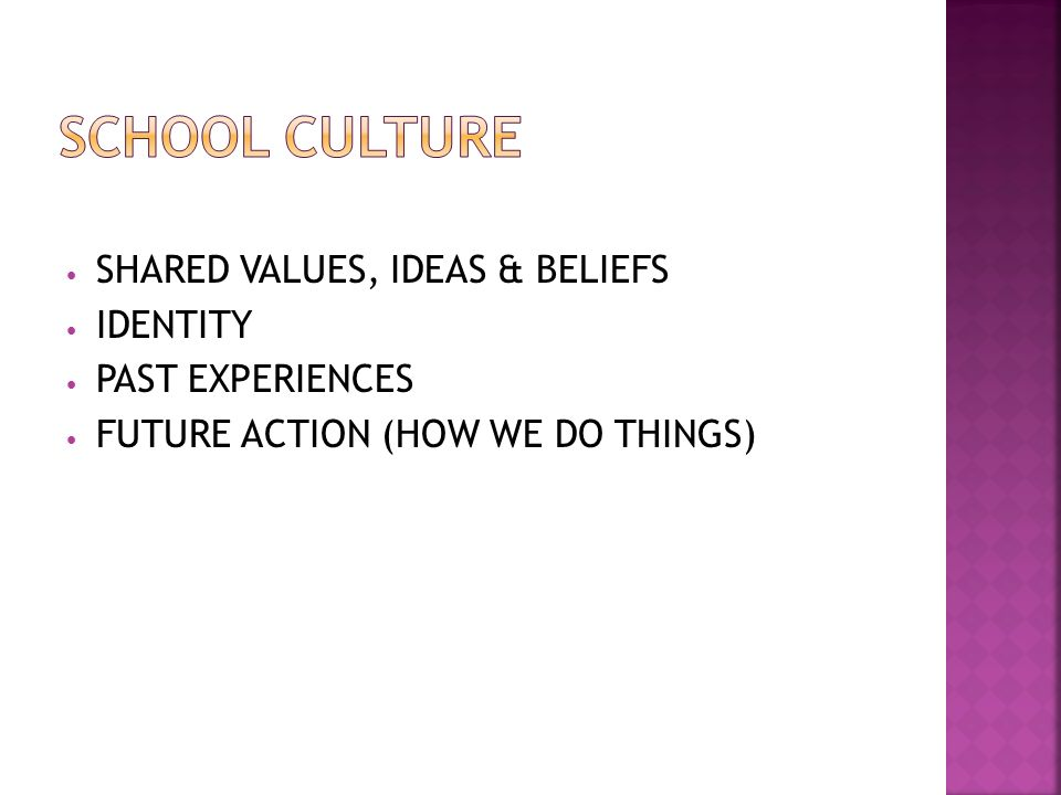 SHARED VALUES, IDEAS & BELIEFS IDENTITY PAST EXPERIENCES FUTURE ACTION (HOW WE DO THINGS)