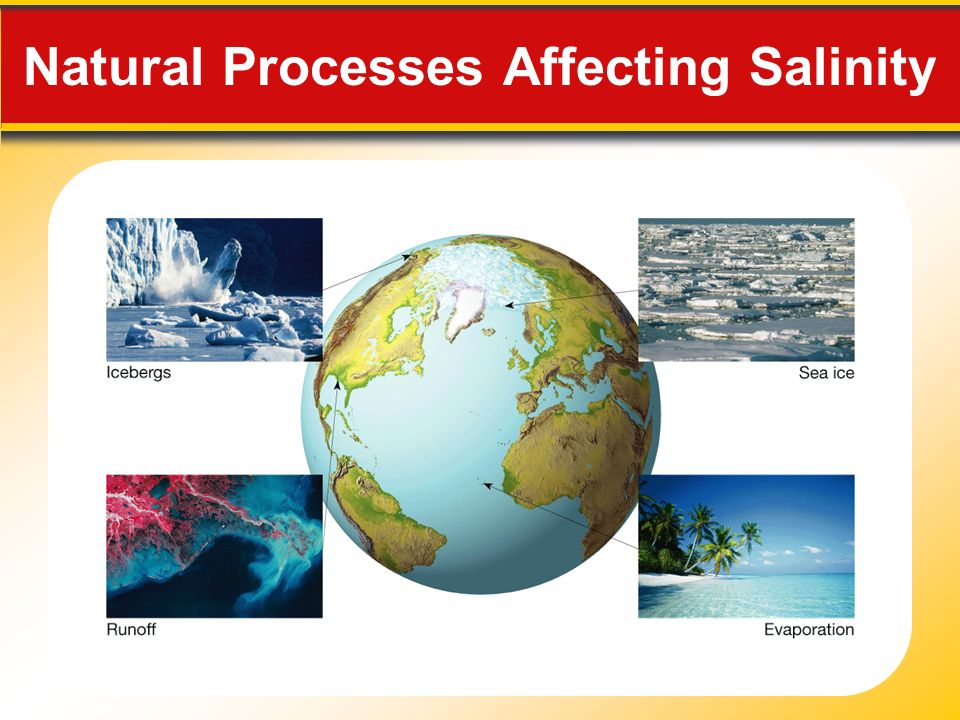 Natural Processes Affecting Salinity