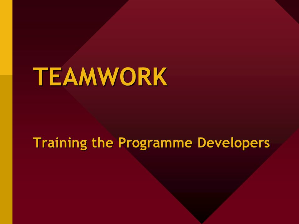 TEAMWORK Training the Programme Developers