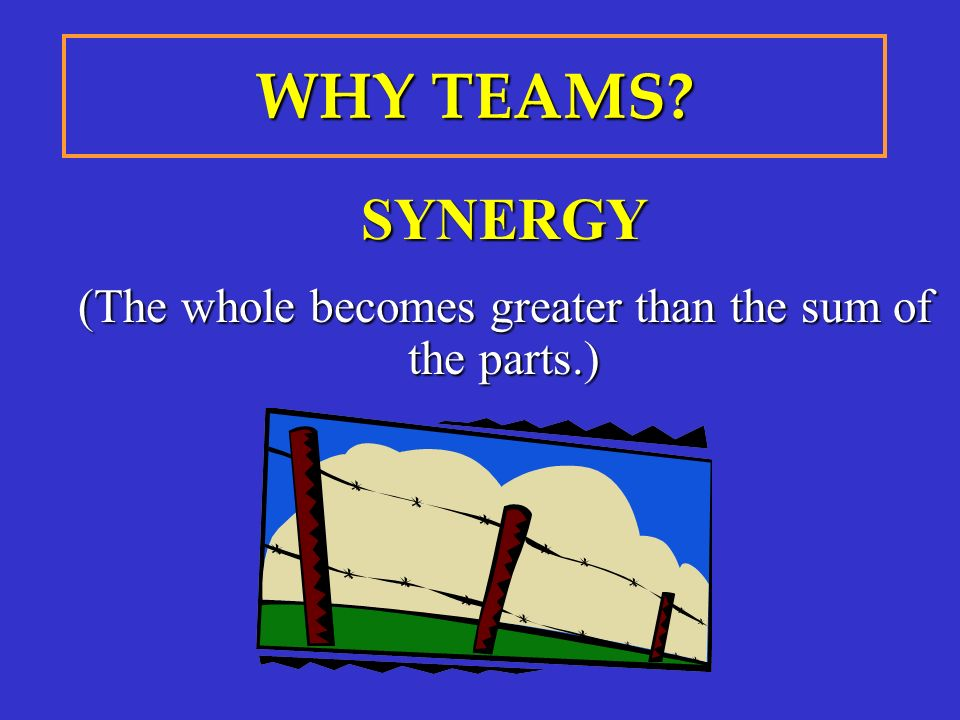 SYNERGY (The whole becomes greater than the sum of the parts.) WHY TEAMS?