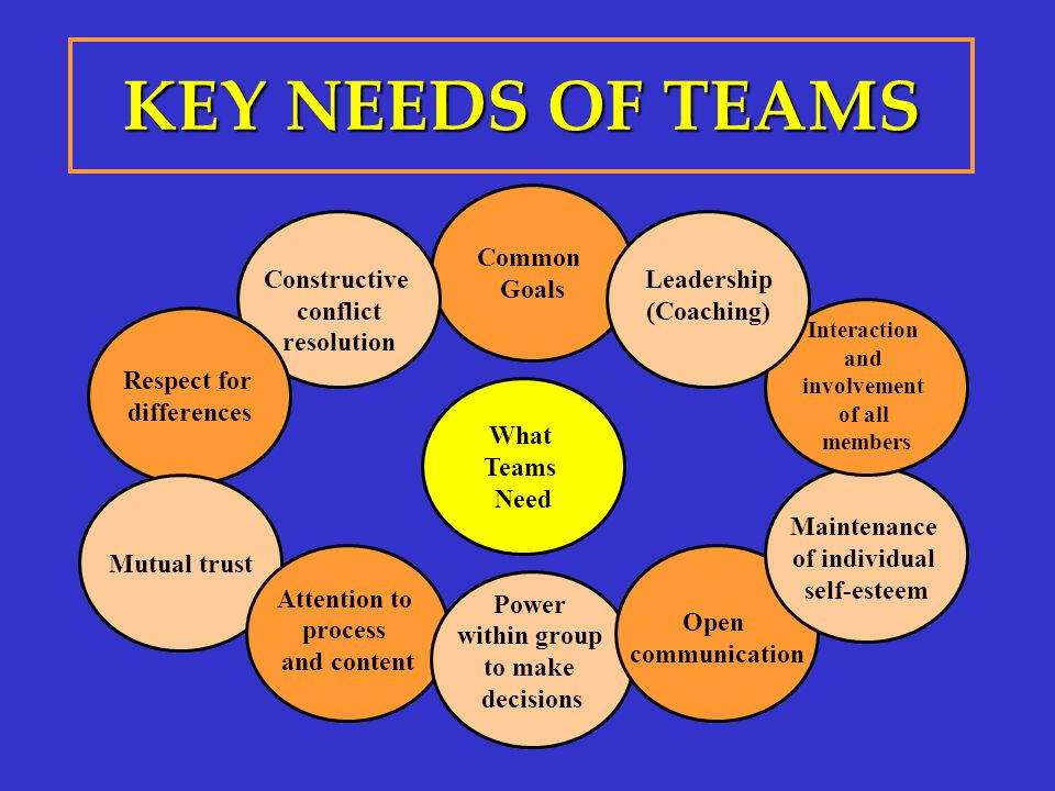 KEY NEEDS OF TEAMS Common Goals Constructive conflict resolution Respect for differences Mutual trust Attention to process and content Power within gr