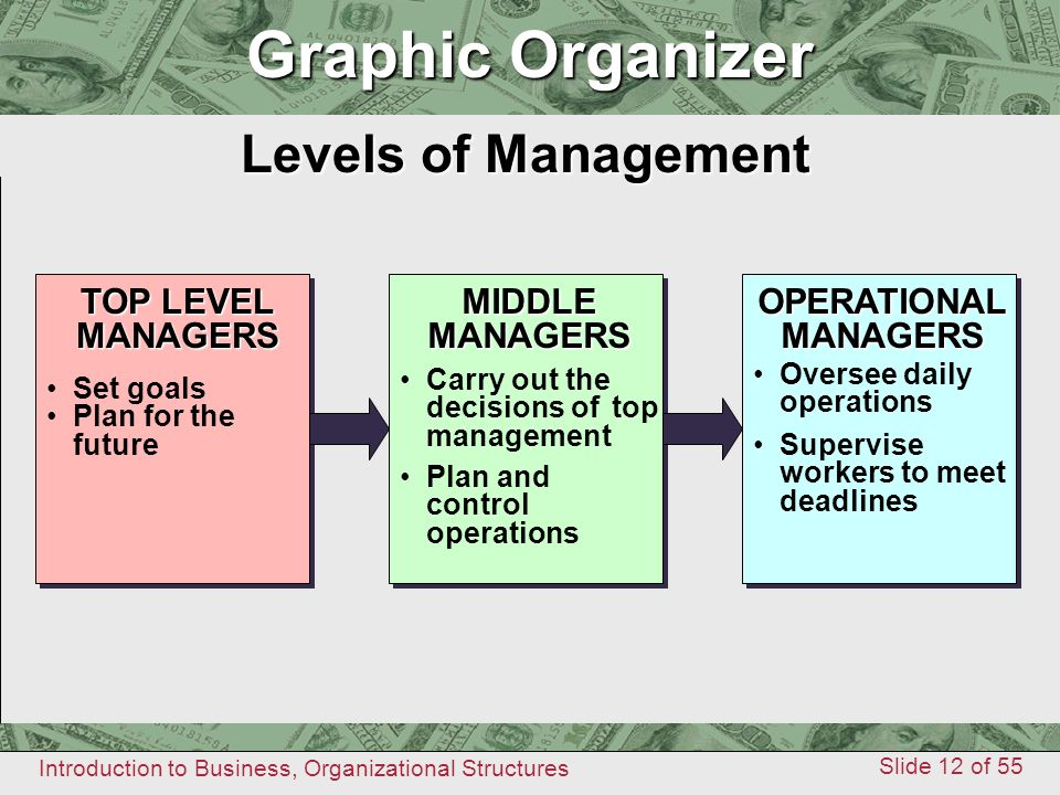 Introduction to Business, Organizational Structures Slide 12 of 55 Graphic Organizer Levels of Management Graphic Organizer TOP LEVEL MANAGERSOPERATIO