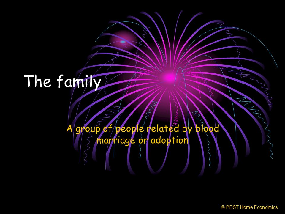 The family A group of people related by blood marriage or adoption © PDST Home Economics