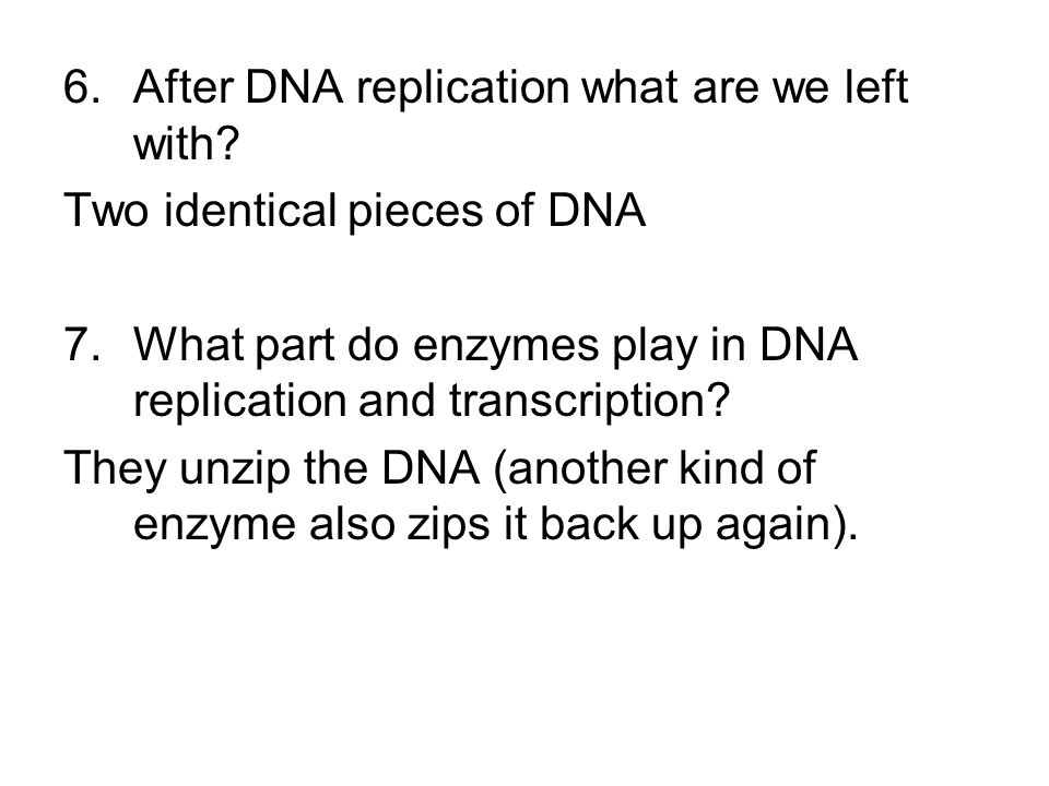 6.After DNA replication what are we left with.