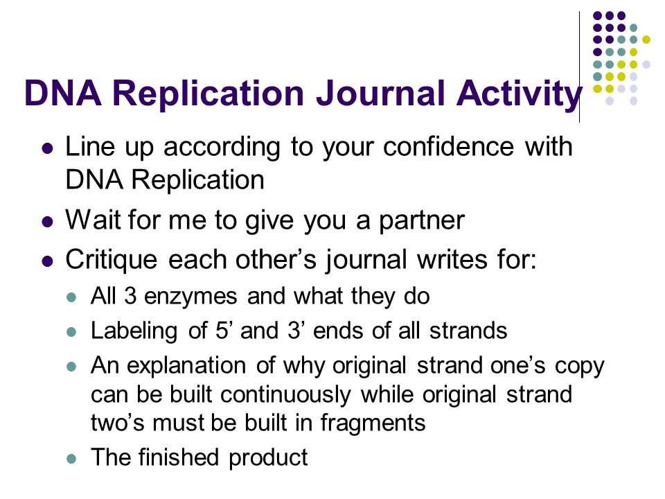 DNA Replication Journal Activity Line up according to your confidence with DNA Replication Wait for me to give you a partner Critique each other's journal writes for: All 3 enzymes and what they do Labeling of 5' and 3' ends of all strands An explanation of why original strand one's copy can be built continuously while original strand two's must be built in fragments The finished product