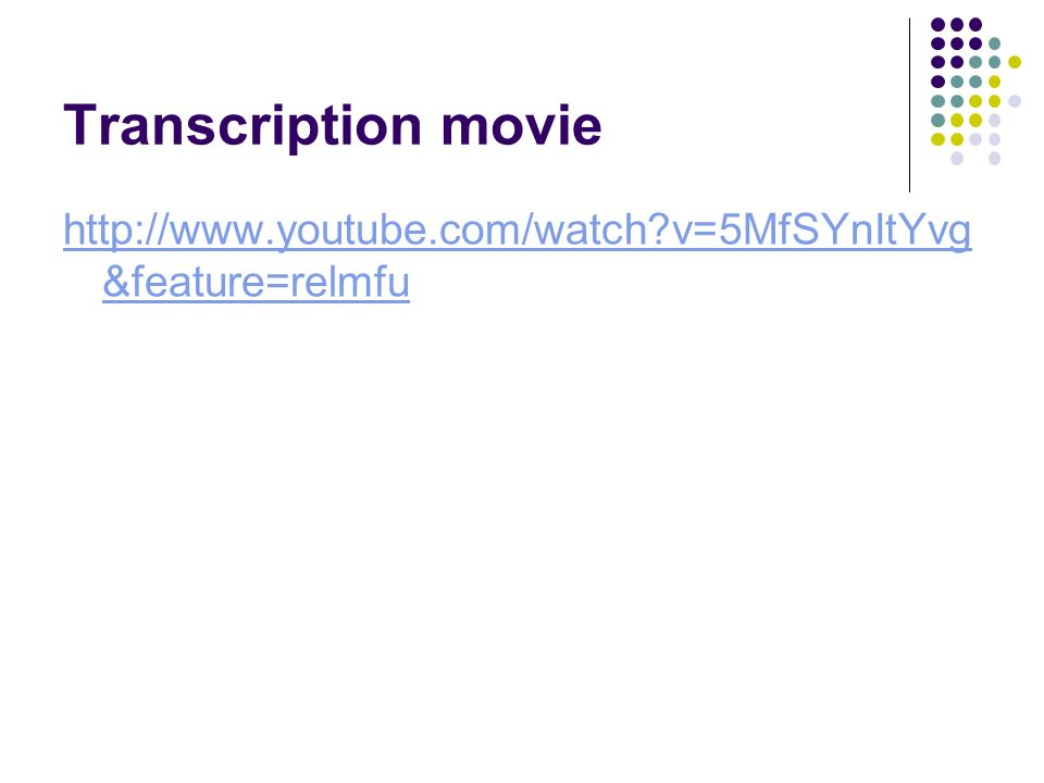 Transcription movie   v=5MfSYnItYvg &feature=relmfu