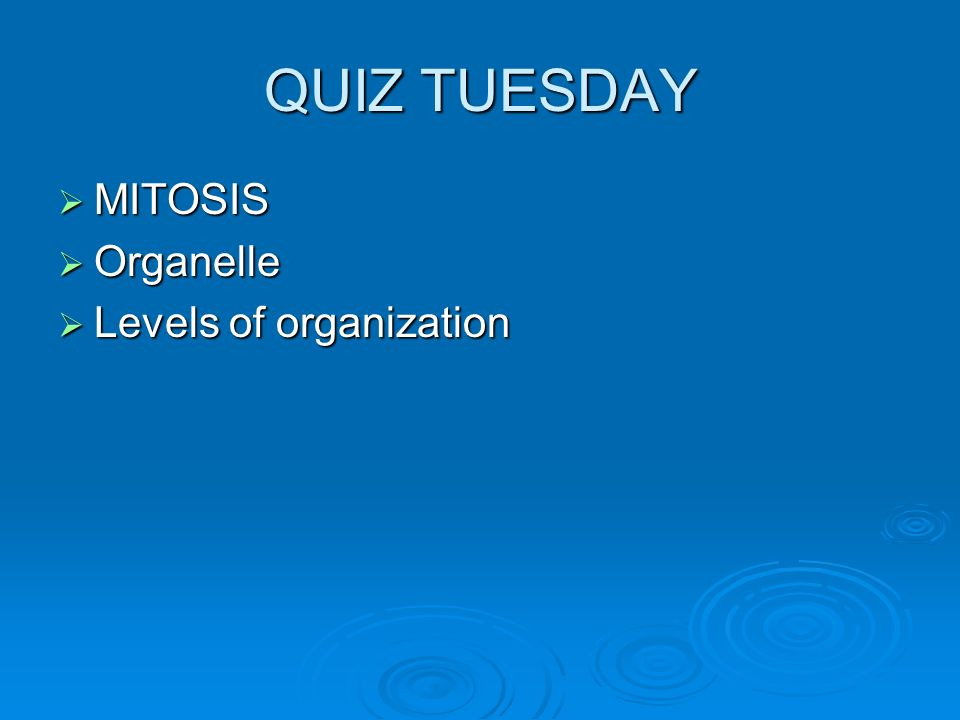 QUIZ TUESDAY  MITOSIS  Organelle  Levels of organization