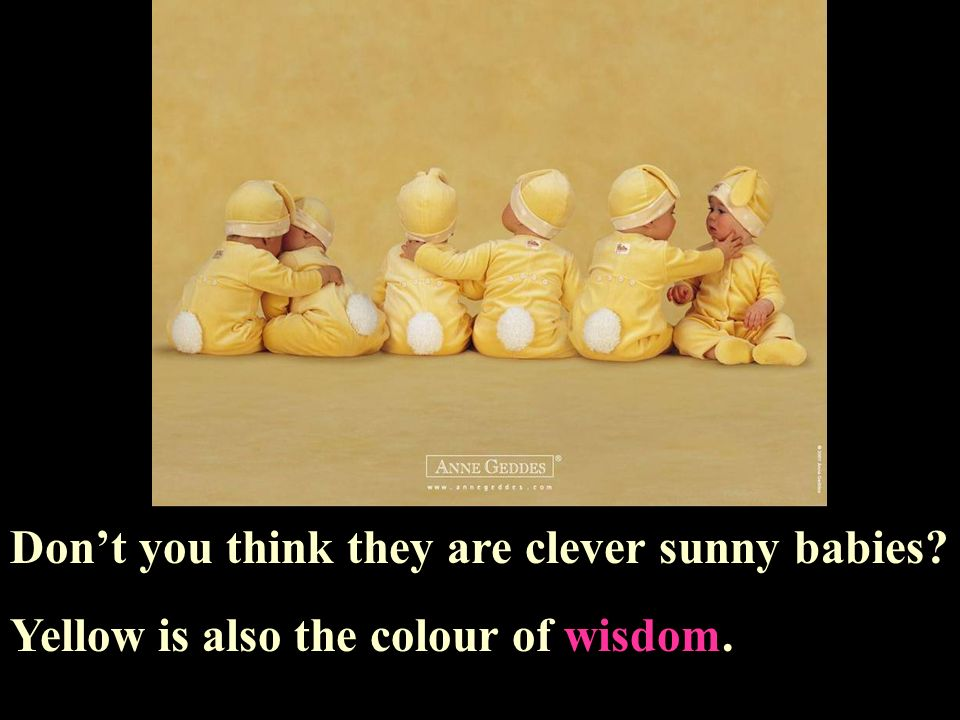 Don't you think they are clever sunny babies Yellow is also the colour of wisdom.