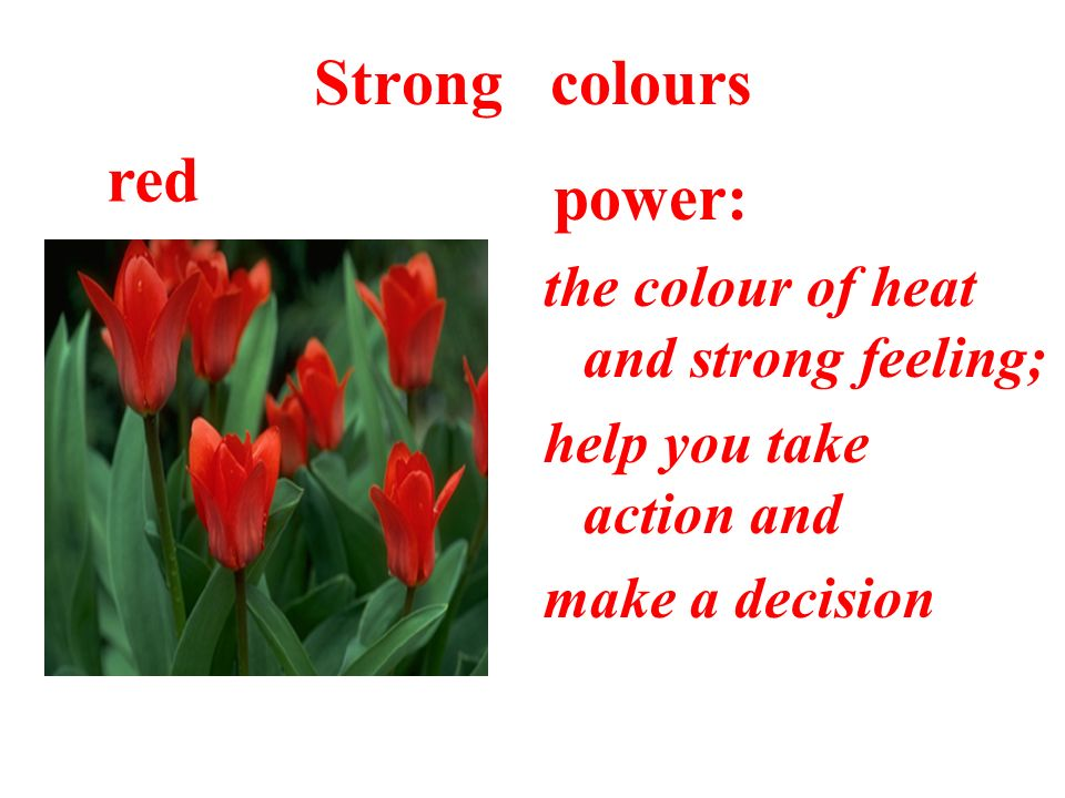 Strong colours power: the colour of heat and strong feeling; help you take action and make a decision red