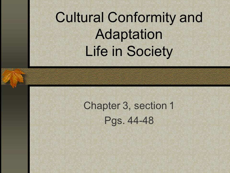 Cultural Conformity and Adaptation Life in Society Chapter 3, section 1 Pgs