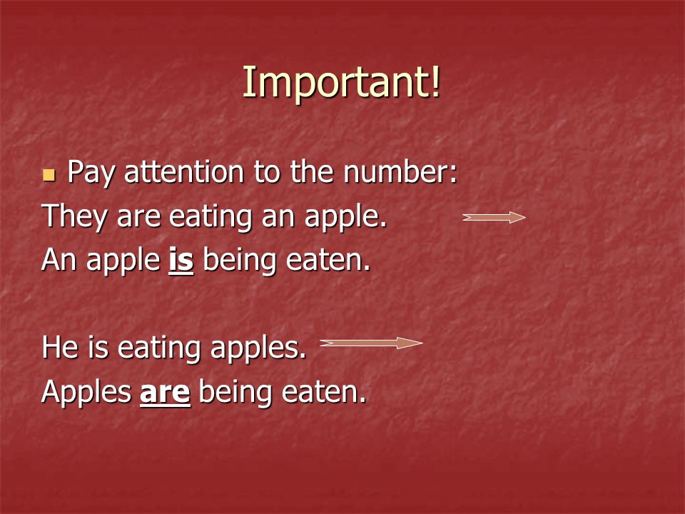 Important. Pay attention to the number: Pay attention to the number: They are eating an apple.