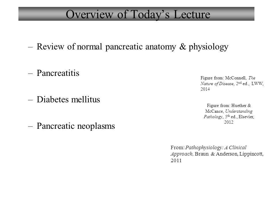 Chapter 13 Disorders of the Pancreas Lecture 13 The Nature of ...