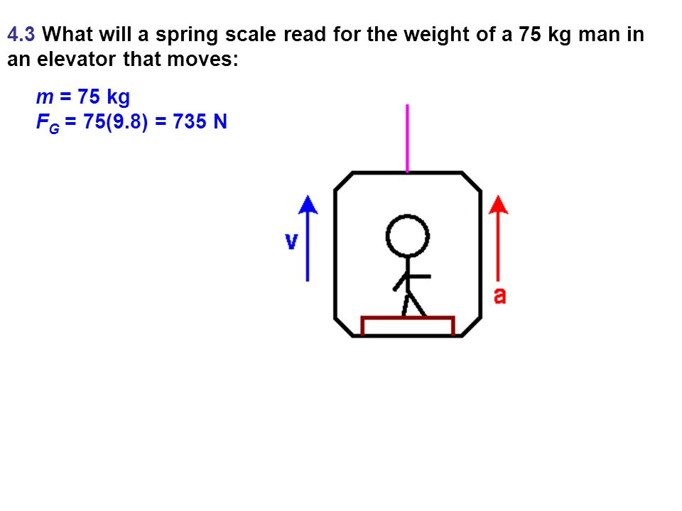 APPARENT WEIGHT The actual weight of a body is the gravitational force that acts on it.