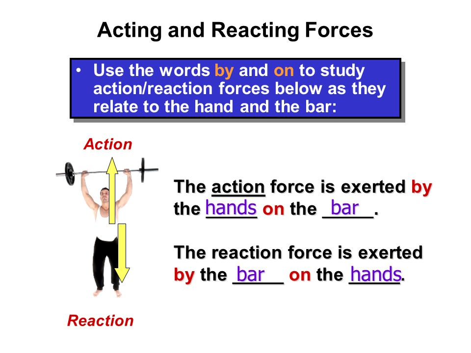 Newton's Third Law Third Law: For every action force, there must be an equal and opposite reaction force.