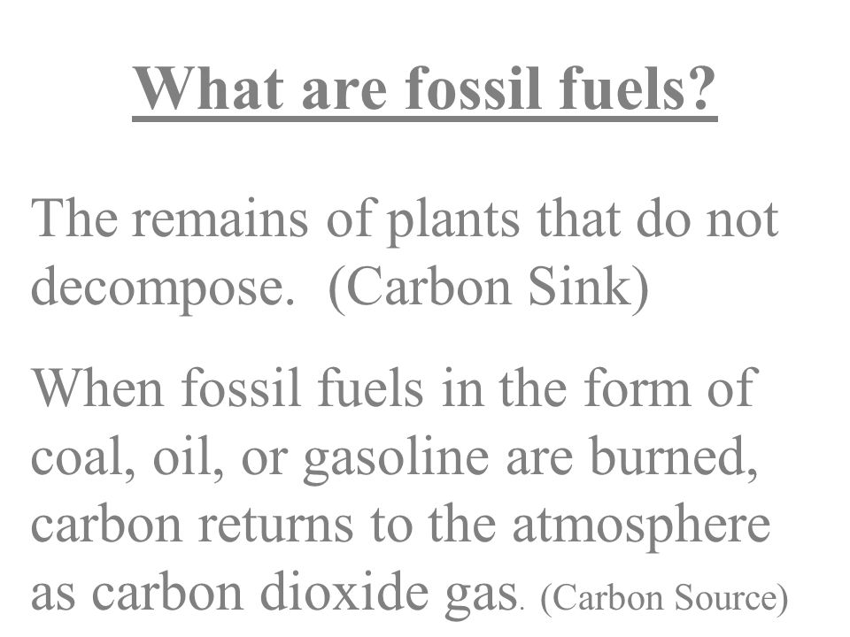 What are fossil fuels. The remains of plants that do not decompose.