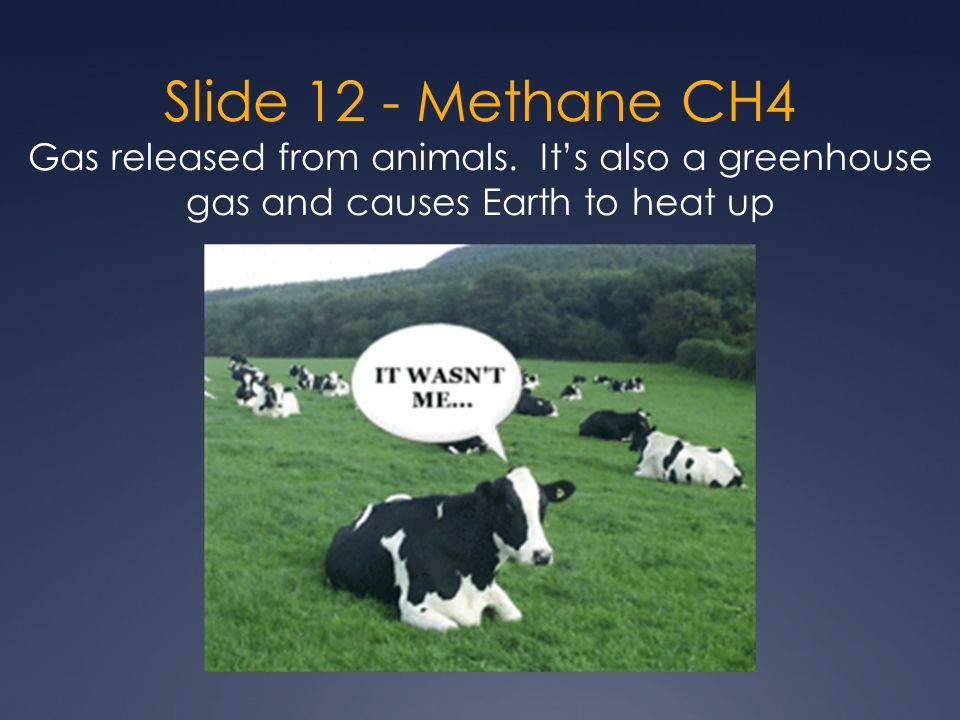 Slide 12 - Methane CH4 Gas released from animals.