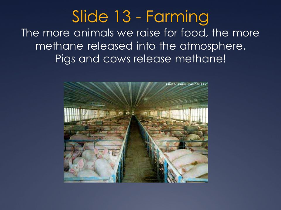 Slide 13 - Farming The more animals we raise for food, the more methane released into the atmosphere.