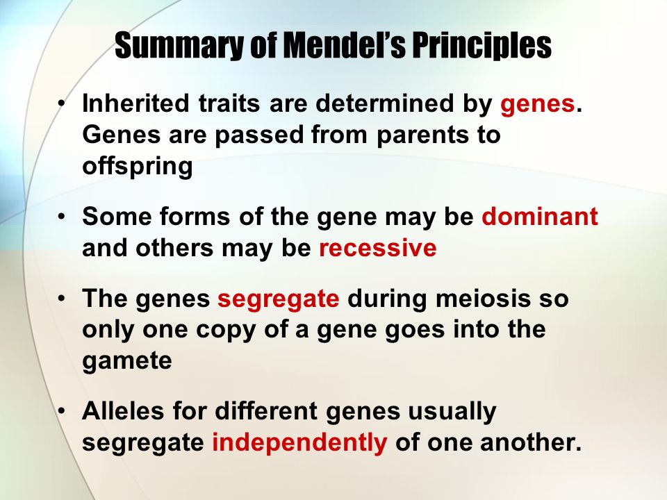Summary of Mendel's Principles Inherited traits are determined by genes.