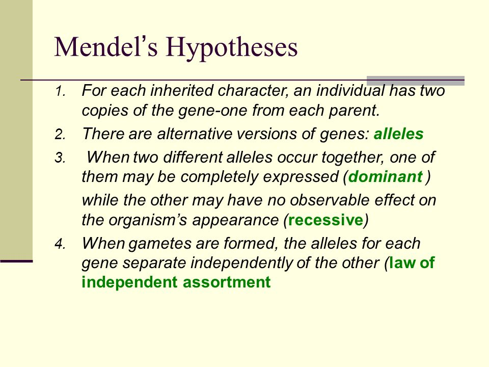 Mendel's Hypotheses 1.