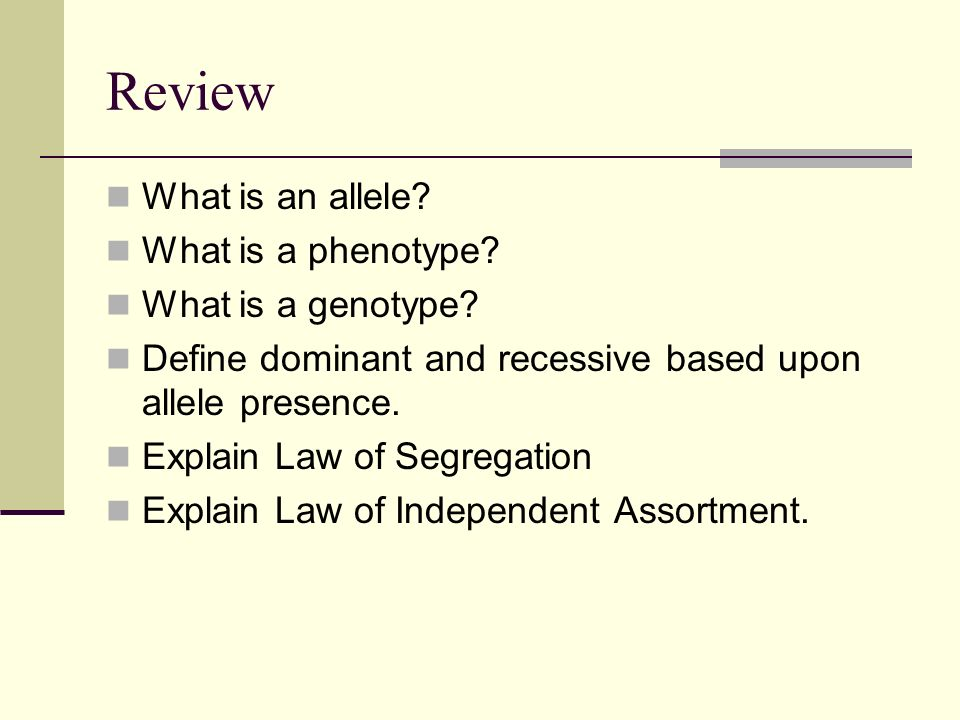 Review What is an allele. What is a phenotype. What is a genotype.