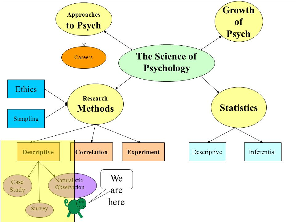 case study roche's new scientific method Abnormal psych (chapter 2) study play  unlike the correlational methods and the experimental method, the case study provides:  -most clinicians oppose the scientific study of their discipline-human beings are complex self-awareness may influence the -results of the study.