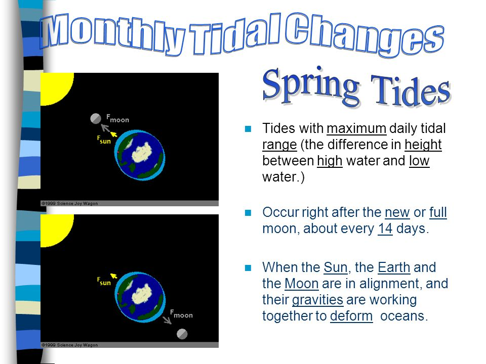 Tides with maximum daily tidal range (the difference in height between high water and low water.) Occur right after the new or full moon, about every 14 days.