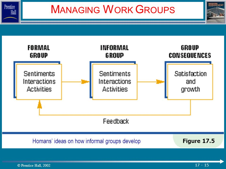 © Prentice Hall, 2002 17 - 15 M ANAGING W ORK G ROUPS Figure 17.5 Homans' ideas on how informal groups develop.