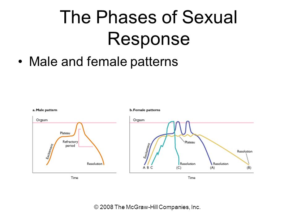 © 2008 The McGraw-Hill Companies, Inc. The Phases of Sexual Response Male and female patterns