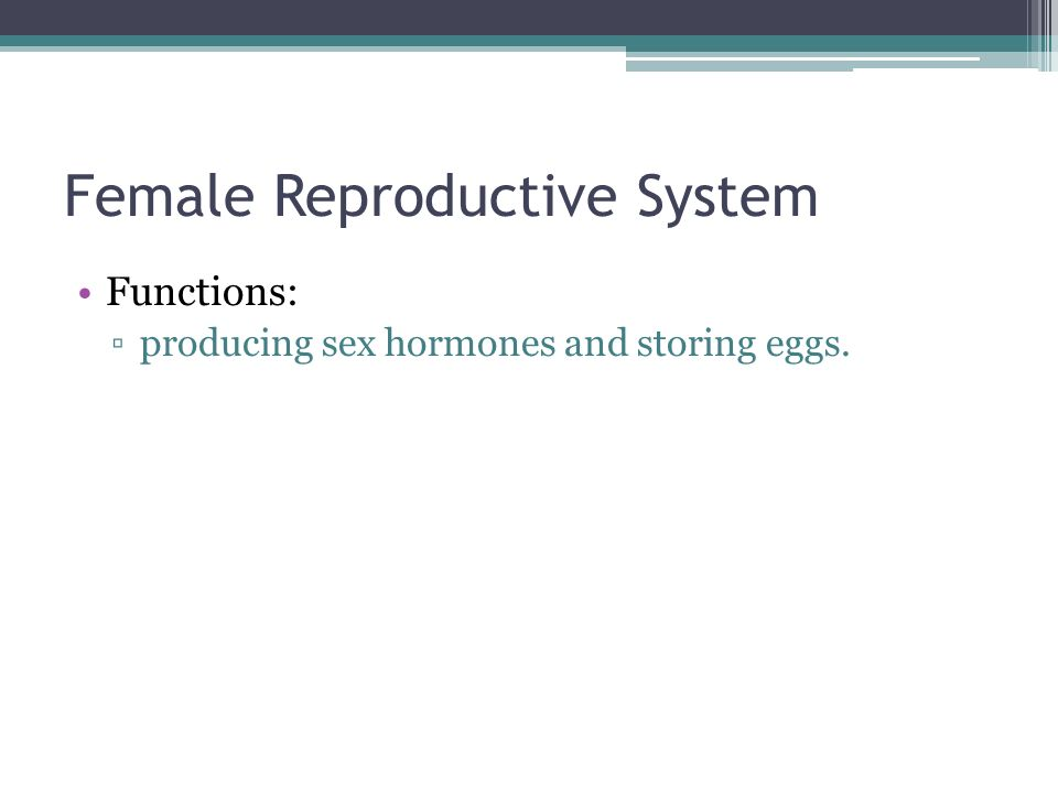 Functions: ▫producing sex hormones and storing eggs.