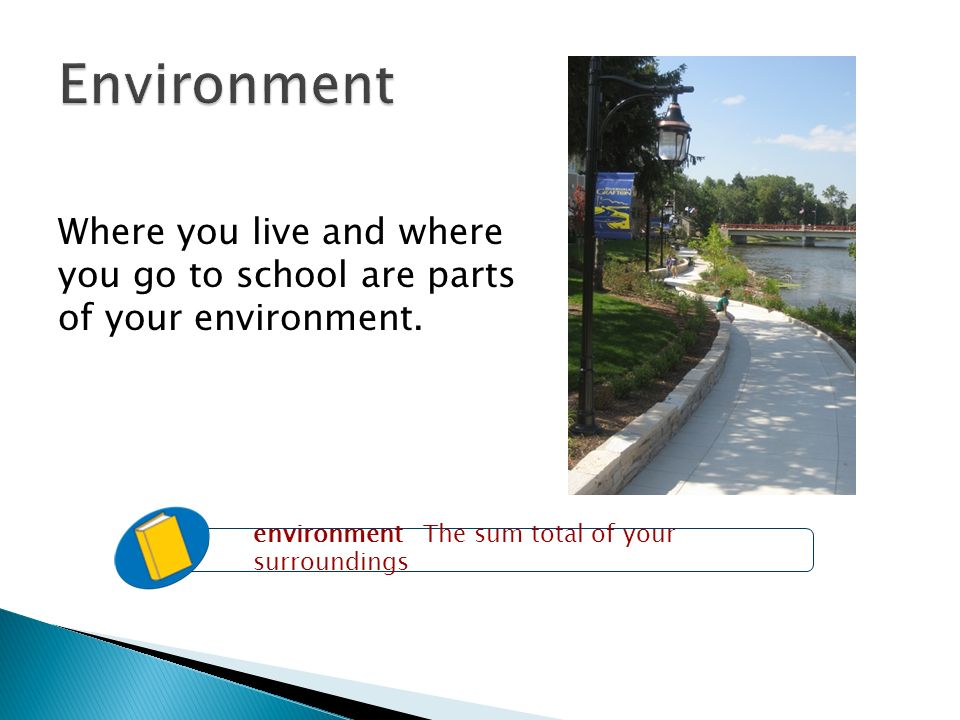 Where you live and where you go to school are parts of your environment.
