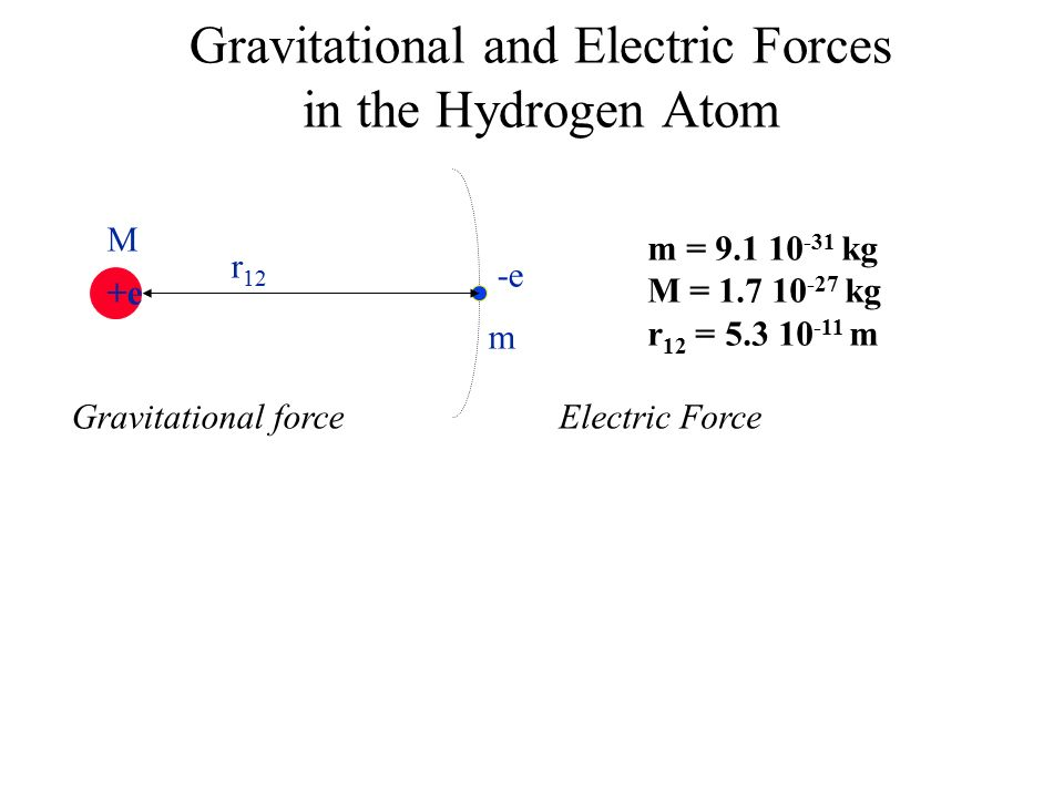 Gravitational and Electric Forces in the Hydrogen Atom +e -e M m r 12 m = kg M = kg r 12 = m Gravitational forceElectric Force
