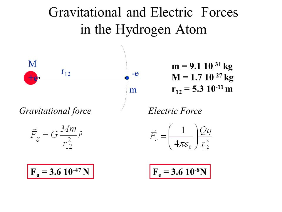 Gravitational and Electric Forces in the Hydrogen Atom +e -e M m r 12 m = kg M = kg r 12 = m Gravitational forceElectric Force F g = NF e = N