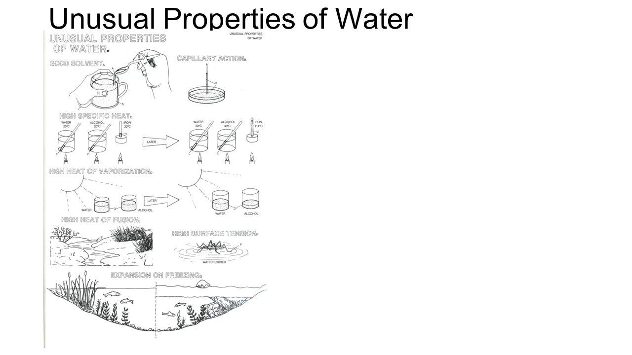 Worksheets Properties Of Water Worksheet applied biology 2014 unit 1 expectations full effort maintain 19 unusual properties of water