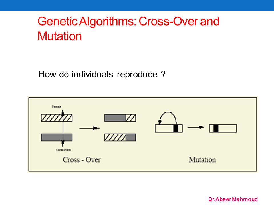 Dr.Abeer Mahmoud 74 Genetic Algorithms: Cross-Over and Mutation How do individuals reproduce