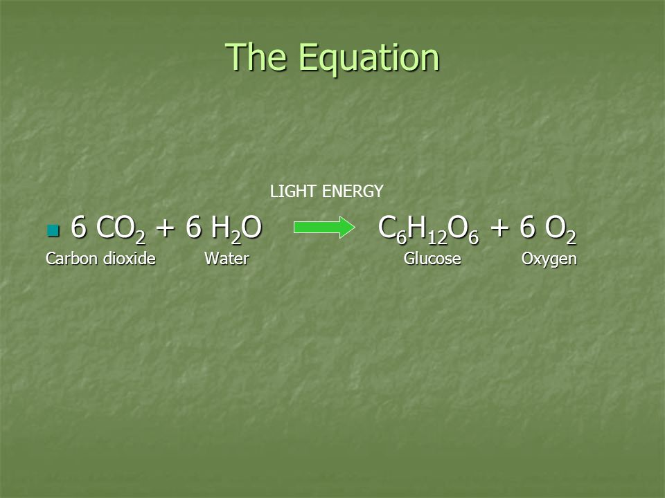 The Equation 6 CO H 2 OC 6 H 12 O O 2 6 CO H 2 OC 6 H 12 O O 2 Carbon dioxide Water Glucose Oxygen LIGHT ENERGY