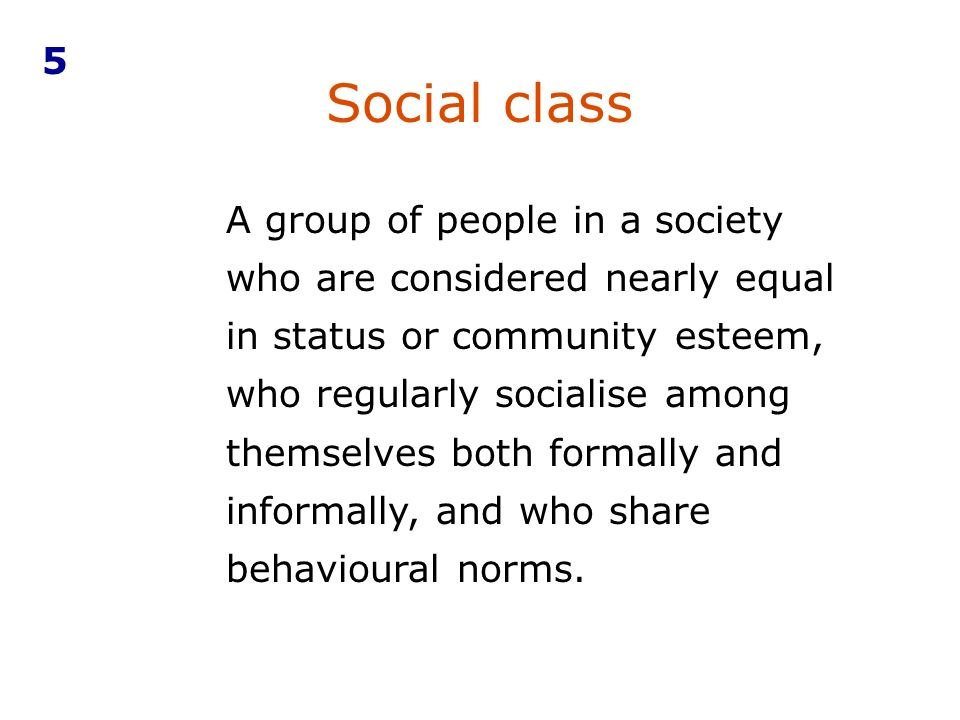 A group of people in a society who are considered nearly equal in status or community esteem, who regularly socialise among themselves both formally and informally, and who share behavioural norms.