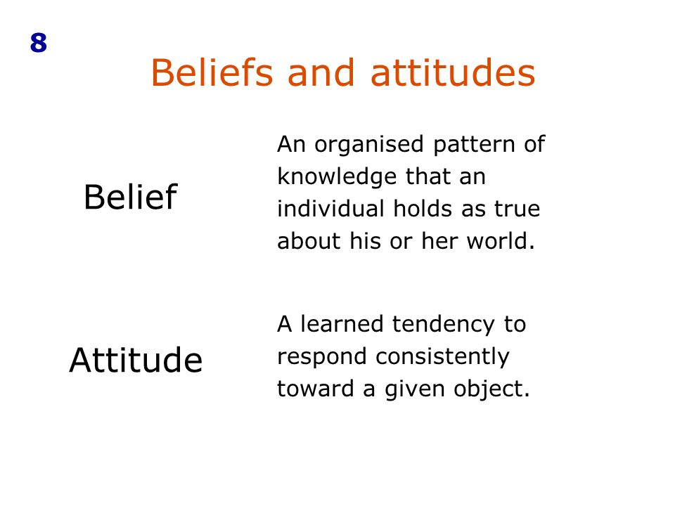 An organised pattern of knowledge that an individual holds as true about his or her world.