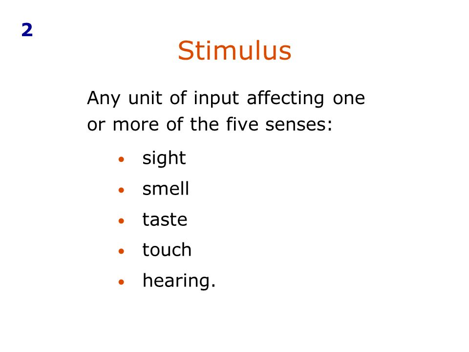 Any unit of input affecting one or more of the five senses: sight smell taste touch hearing.