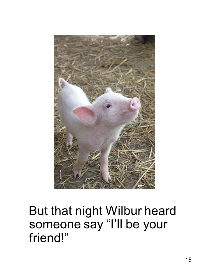 15 But that night Wilbur heard someone say I'll be your friend!