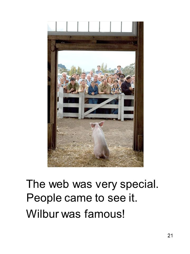 21 The web was very special. People came to see it. Wilbur was famous!