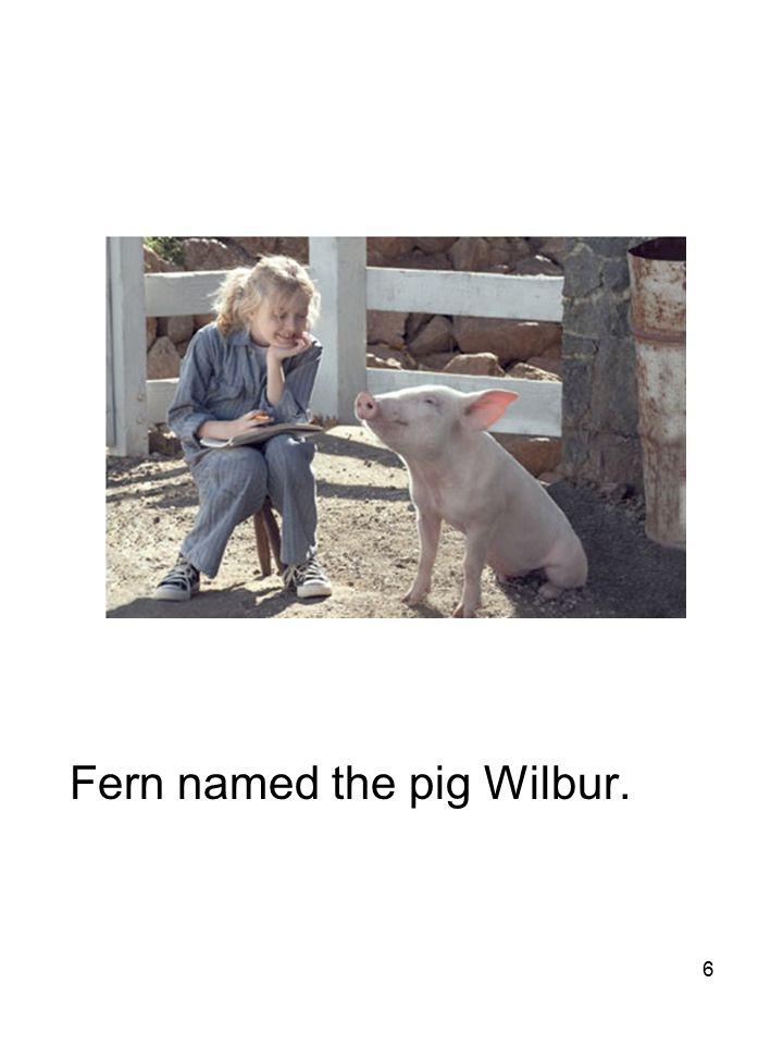6 Fern named the pig Wilbur.