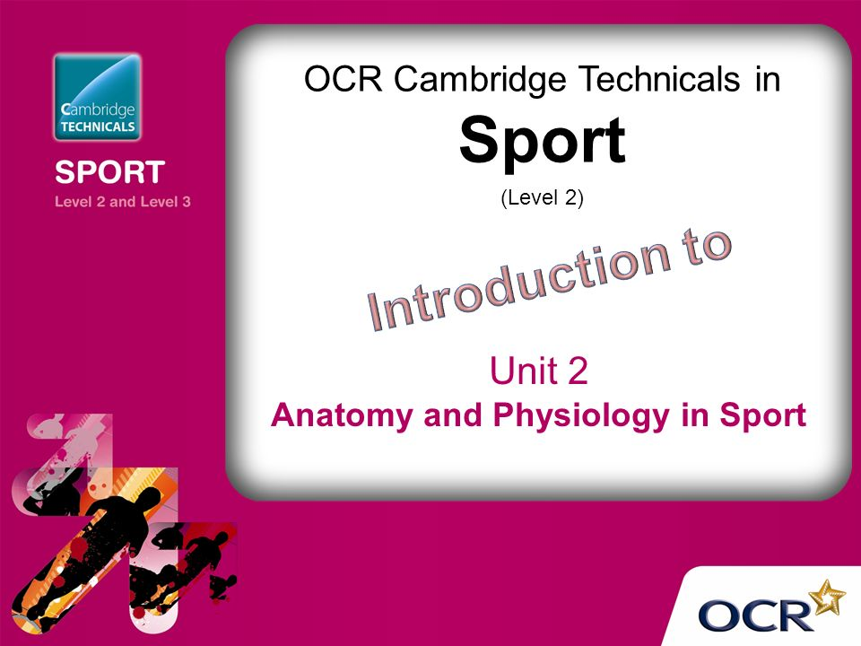 Old Fashioned Anatomy And Physiology In Sport Picture Collection ...