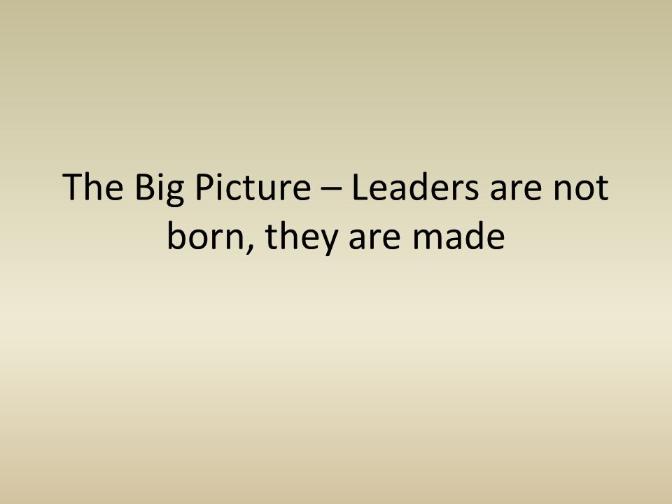 The Big Picture – Leaders are not born, they are made