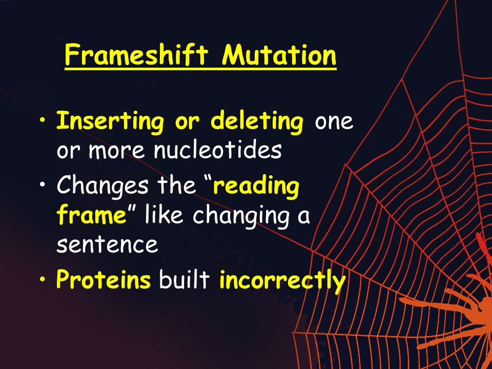 Frameshift Mutation Inserting or deleting one or more nucleotides Changes the reading frame like changing a sentence Proteins built incorrectly