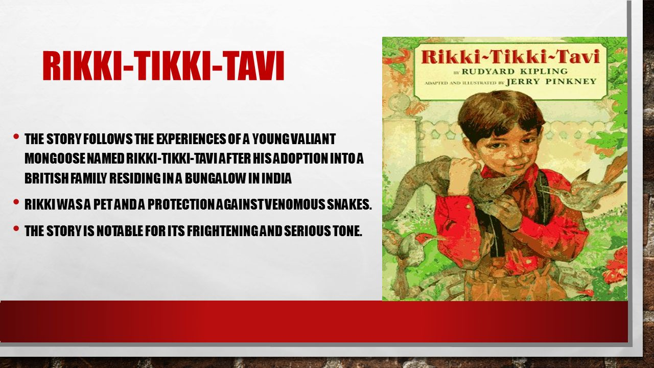 THE STORY FOLLOWS EXPERIENCES OF A YOUNG VALIANT MONGOOSE NAMED RIKKI TIKKI TAVI