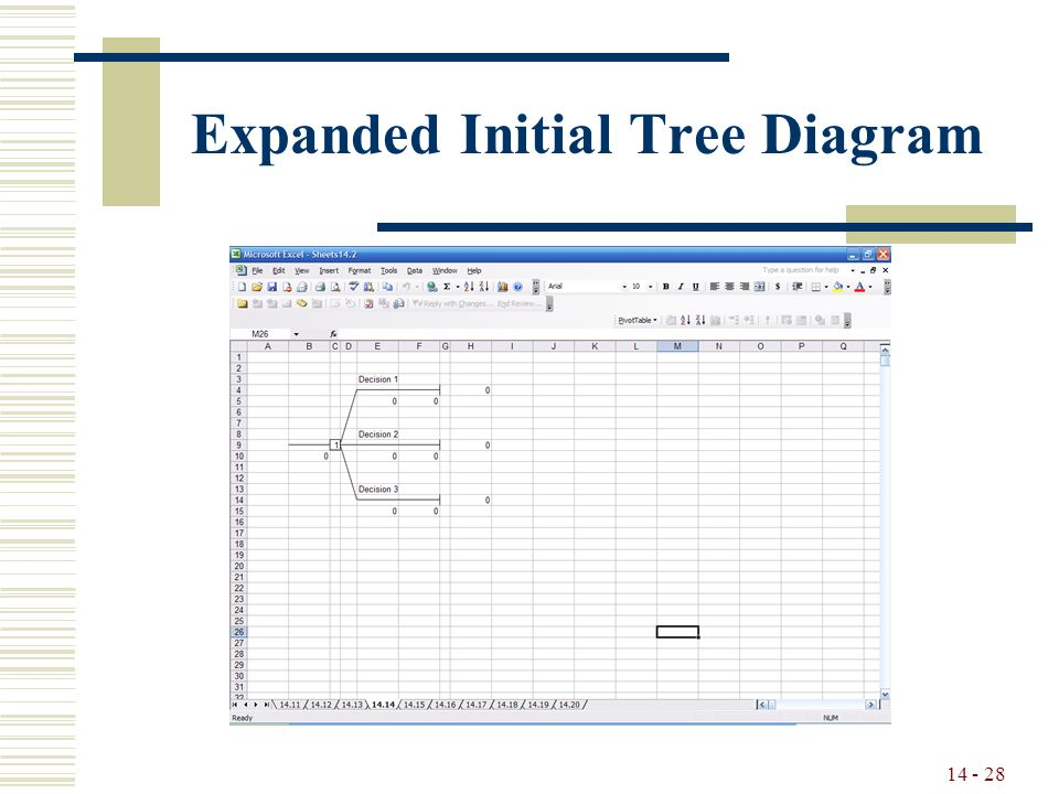14 - 28 Expanded Initial Tree Diagram
