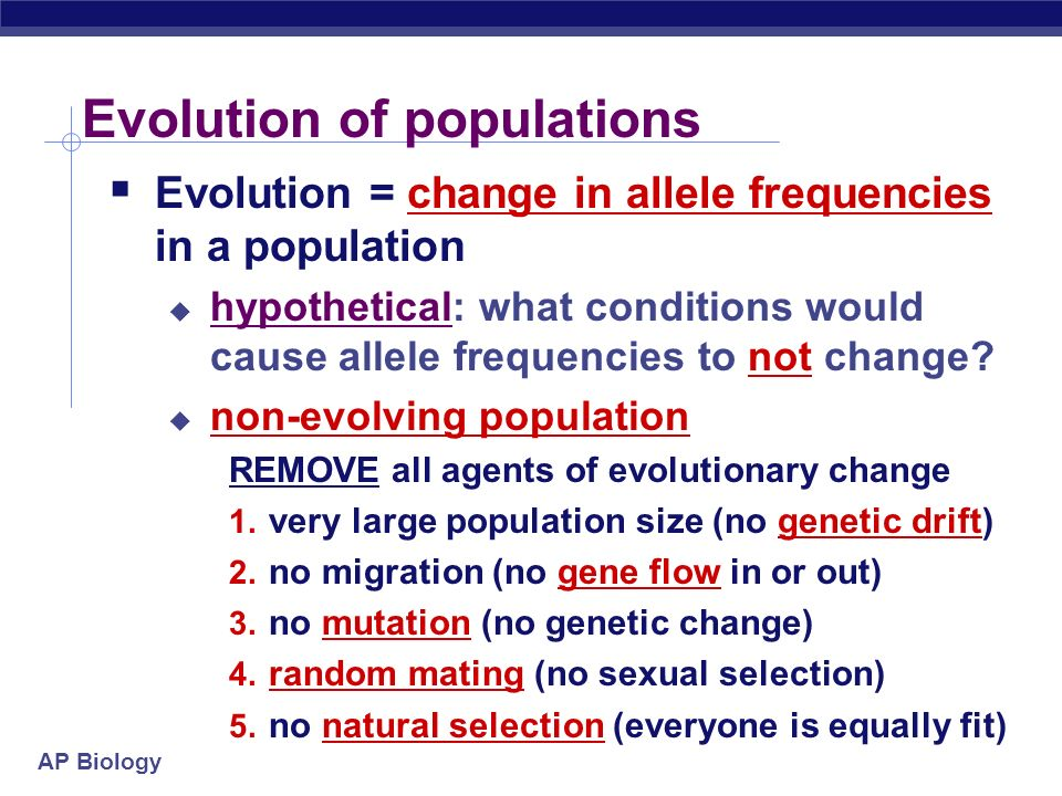 AP Biology Populations & gene pools  Concepts  a population is a localized group of interbreeding individuals  gene pool is collection of alleles in the population  remember difference between alleles & genes.