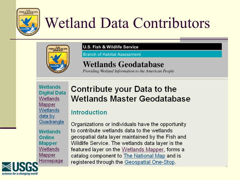 Fish And Wildlife Services Wetlands Geodatabase Mitch Bergeson - Us fish and wildlife service national wetlands inventory map