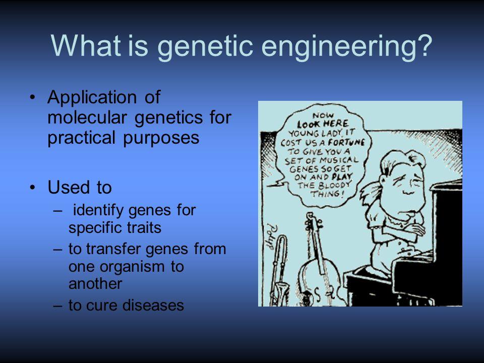 What is genetic engineering.