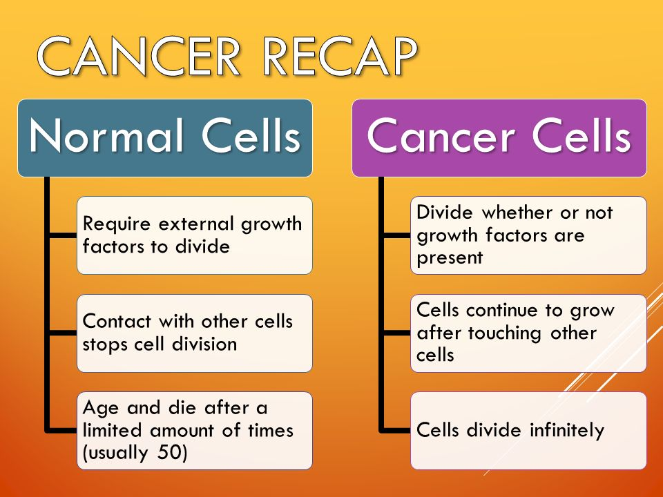 Normal Cells Require external growth factors to divide Contact with other cells stops cell division Age and die after a limited amount of times (usually 50) Cancer Cells Divide whether or not growth factors are present Cells continue to grow after touching other cells Cells divide infinitely